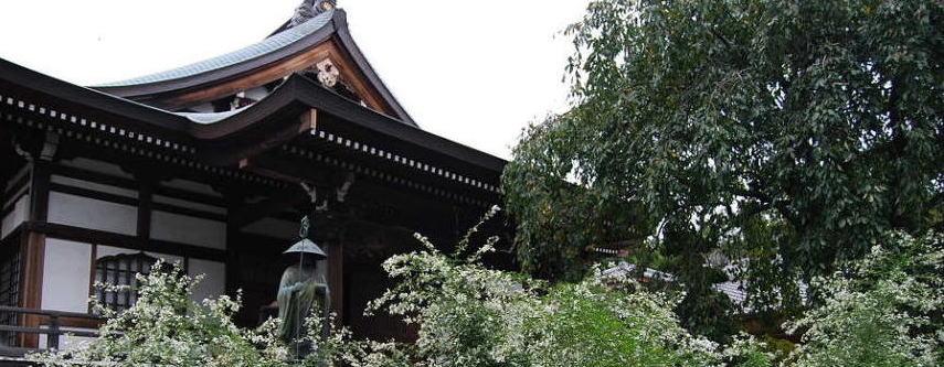 金藏院本堂と白萩